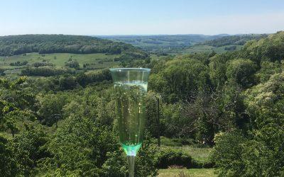 Un projet de vie autour de la vigne à Coiffy-le-Haut Florence et Pierre, vignerons en biodynamie